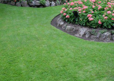 garden-lawn-services