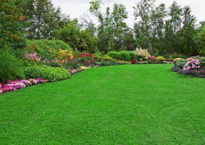 lawn-care-services-2