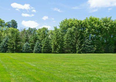 pristine-lawn-care-gallery